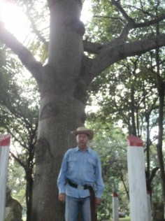 El bosque Martiano del Ariguanabo