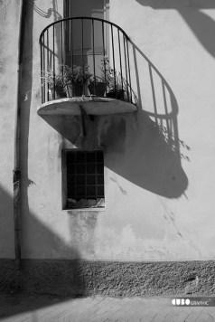 Giuseppe_Bucolo-Catalimita 2010 (6)