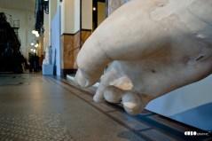 Giuseppe_Bucolo-Museo Montemartini 2010 (15)