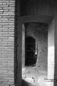 Giuseppe_Bucolo-Villa Adriana 2010 (6)