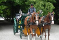 austria-vienna-by-sarah-grimsdale-schoenbrunn-palace-spring-2011-5