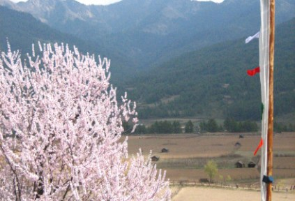 bhutan-bumthang-by-lindsey-weaver-view-from-my-homestay-window-2006