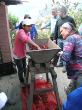 boliviags_by-carol-conzelman-depulping-coffee-cherries-2012