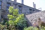 england-oxford-christ-church-ljcarroll-window-when-writg-alice-in-wonderlnd