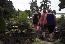 galapagosgs_by-kara-gordon-people-walking-2011