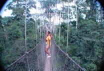ghana-by-daniel-levinson-canopy-walk-2008