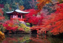 japan-kyoto-from-google-1