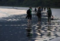 brazilgs_by-tim-kittel-pici-beach-2012
