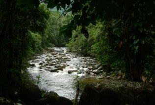 brazilgs_by-unknown-rio-fazenda-2013