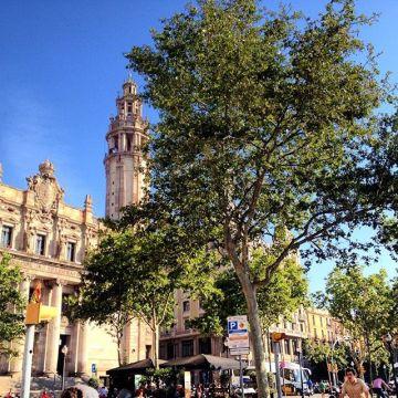 Barcelona by Julia McCue