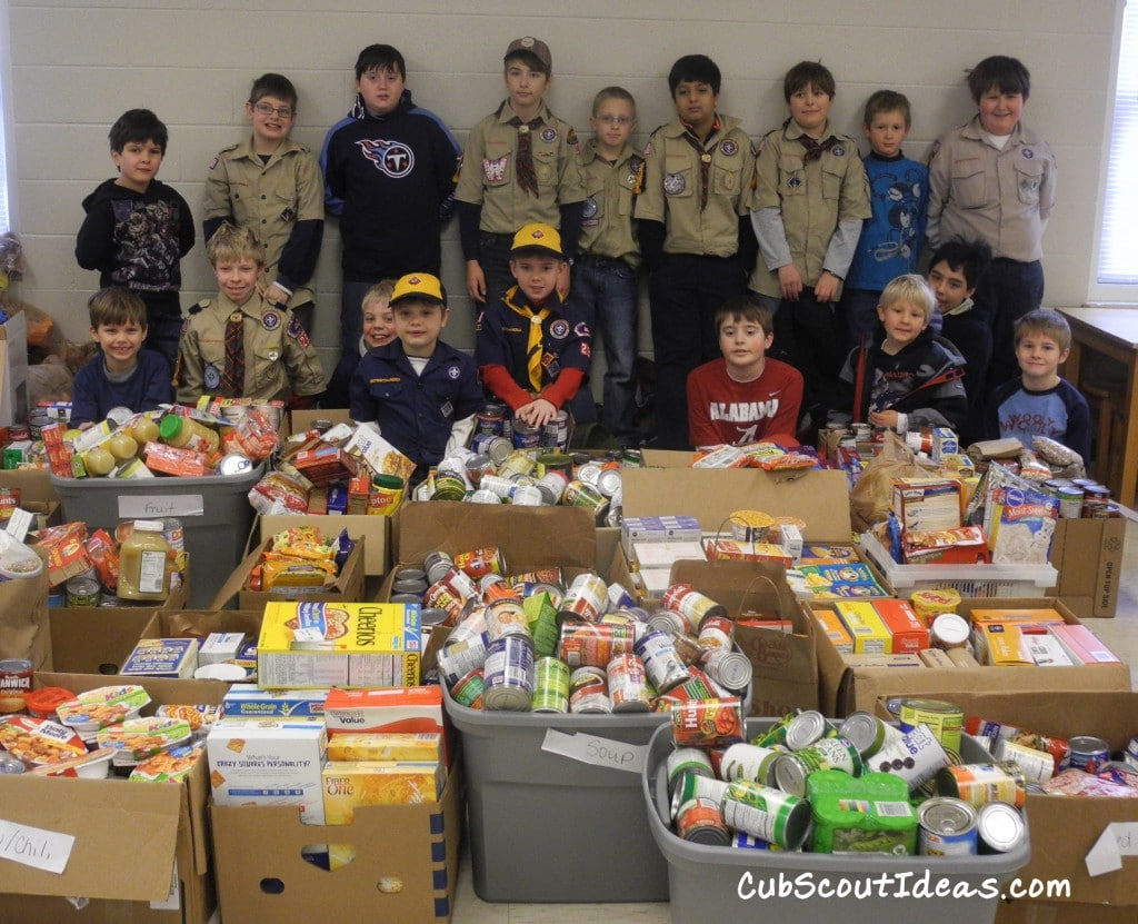 Cub Scout Community Service Projects And Involvement