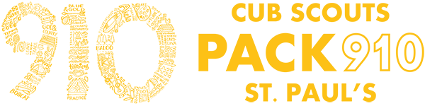 Cub Scout Pack 910