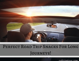Perfect Road Trip Snacks For Long Journeys!