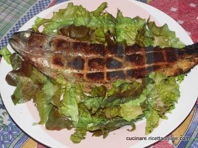 Trota fario alla brace ricette di cucina facile on line - Ricette cucina on line ...