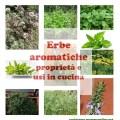 Erbe aromatiche, proprietà e usi in cucina