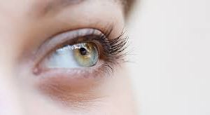 yeux marc de café