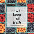 how to keep fruit fresh