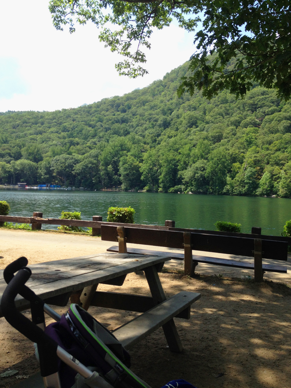 LocaL Love: Bear Mountain Hessian Lake