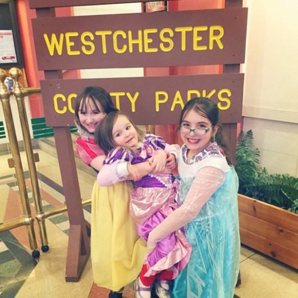 Disney Live at Westchester County Center