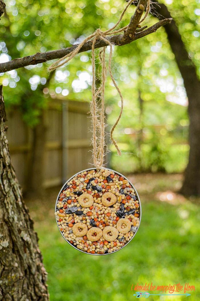 Earth Day kids activities - mason jar lid bird feeder
