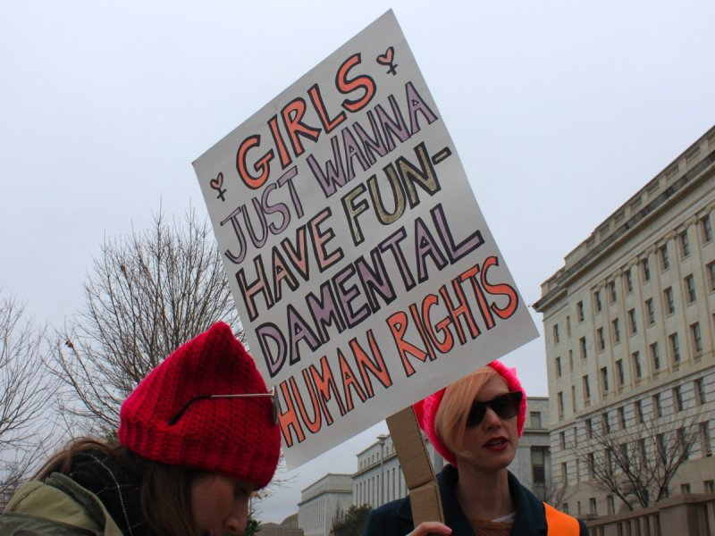 Best signs from the Women's March | Girls Just Wanna Have Fun-damental Human Rights via Business Insider
