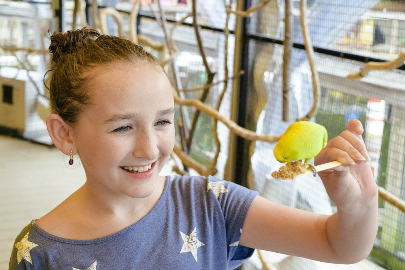 feeding birds at Mystic Aquarium's Birds of the Outback exhibit
