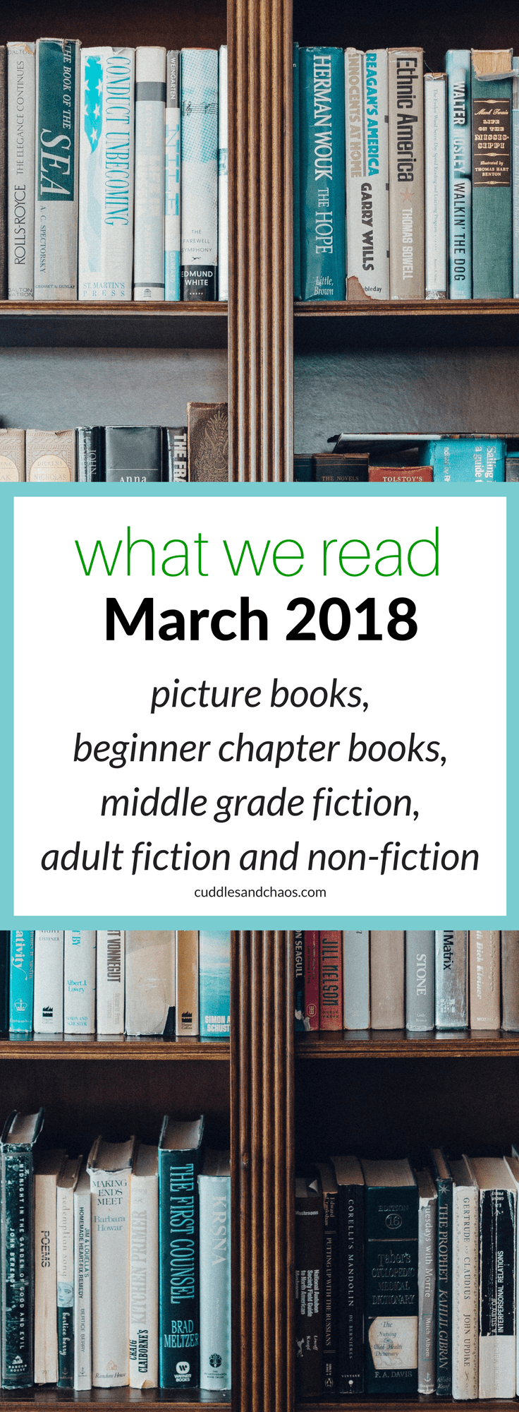 what we read March 2018 - picture books, beginner chapter books, middle grade fiction, adult fiction and non-fiction - #bookstoread