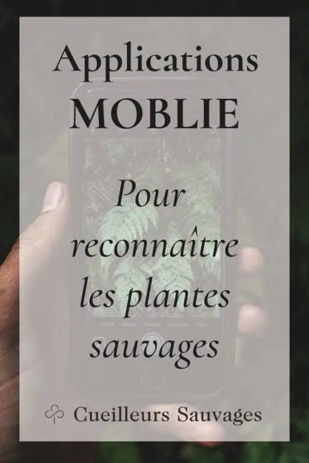 Voici une sélection des meilleures applications mobile iOS et Android pour apprendre facilement à reconnaître les plantes sauvages. Cueilleurs Sauvages