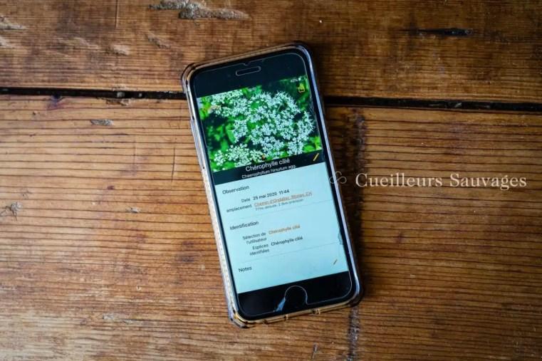 Application de reconnaissance des plantes Flora Incognita