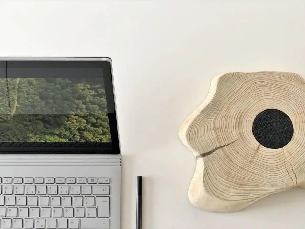 Ressources web gratuites sur les plantes sauvages et la botanique
