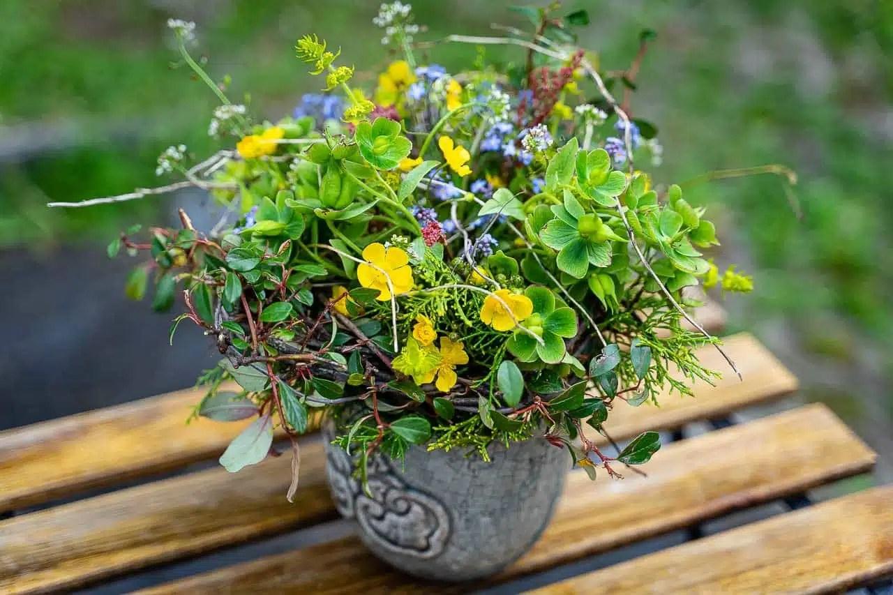Atelier Floral avec les plantes sauvages