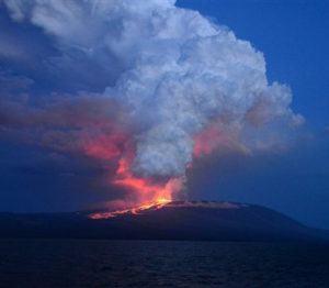 Volcan Wolf erupting Monday afternoon.