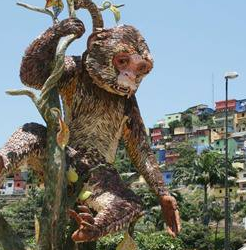 Balmy winters, leafy legumes, coastal monkeys and other linguistic ambiguities in Ecuador