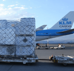 Millions more vaccines arrive as demand soars; City brags about big projects; Week's vaccine schedule; Ecuador not in top 10 Latam Covid deaths list