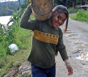Establishing biocorridors in Ecuador's Amazon will protect humans as well as endangered species