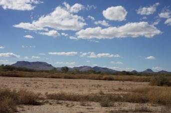 Baren grassland