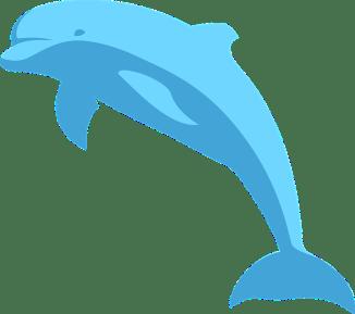 los amigos de la ballena