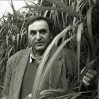 AL ABRIGO -Juan José Saer