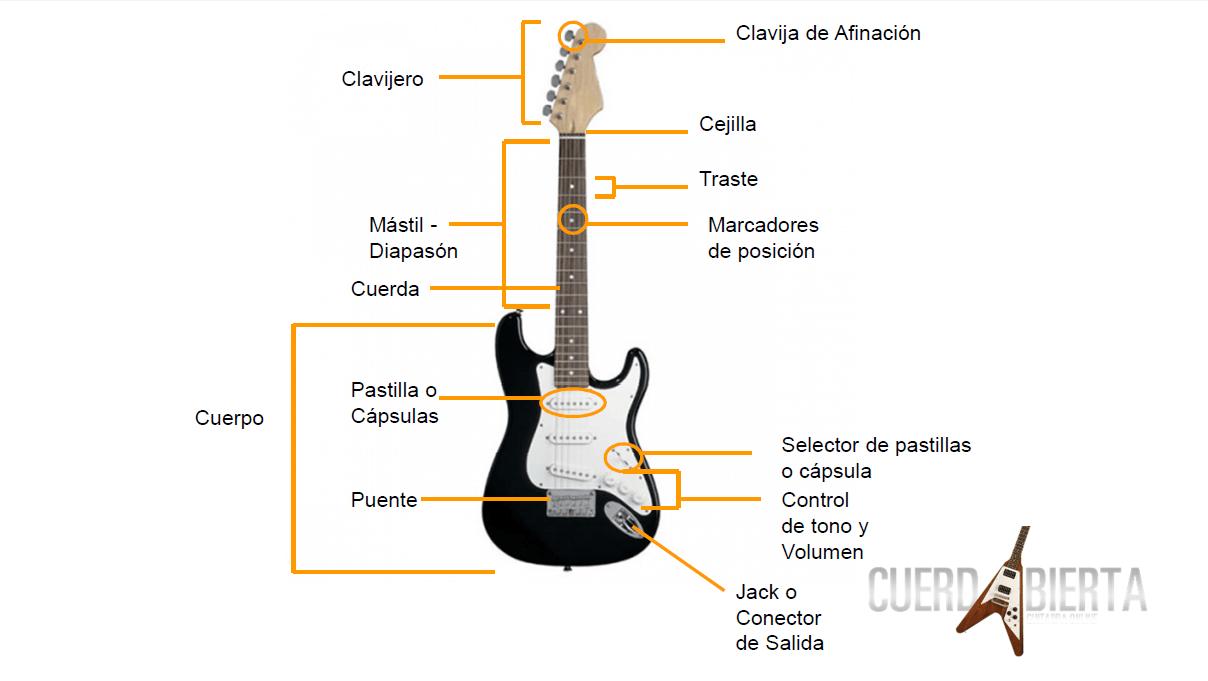 Image result for partes de una guitarra electrica