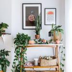 36 Best Diy Plant Stand Ideas For Indoor And Outdoor Privacy Screen Ideas
