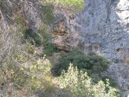 Vista de la boca de la cueva