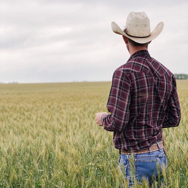 Metrosexual farmer
