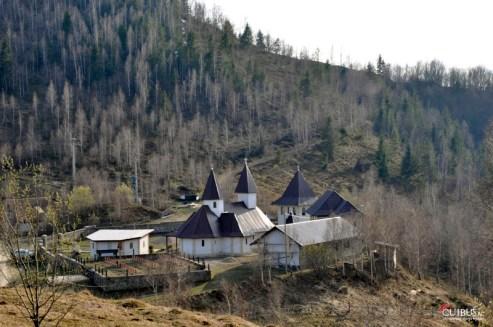Muntele_Rece_Cuibus_Blog_Transilvania