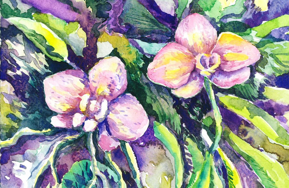 orchid-medley_lr
