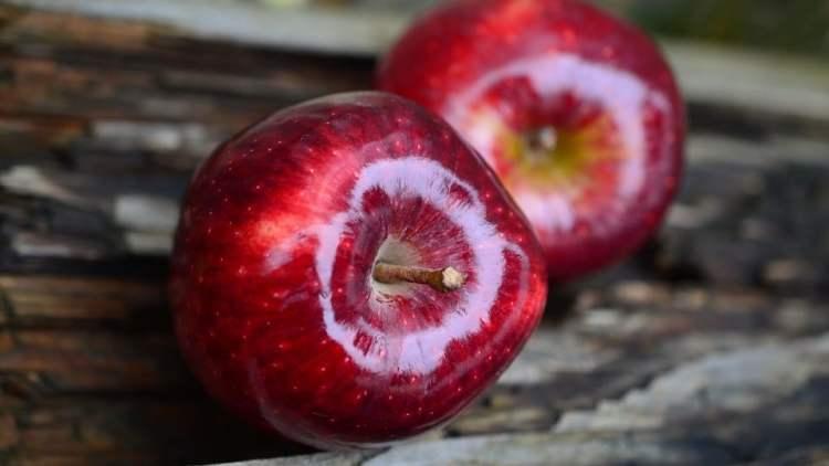 Pomme, le fruit du mois de mars