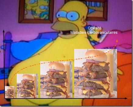 obesité-maladies-cardiovasculaire