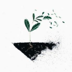 Ecologie: respect planète, nature, animaux et hommes.