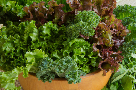 67008172 - close-up of healthy greens in a salad bowl