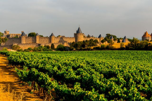 81458091 - fortified town iof carcassonne. region of occitanie. france.