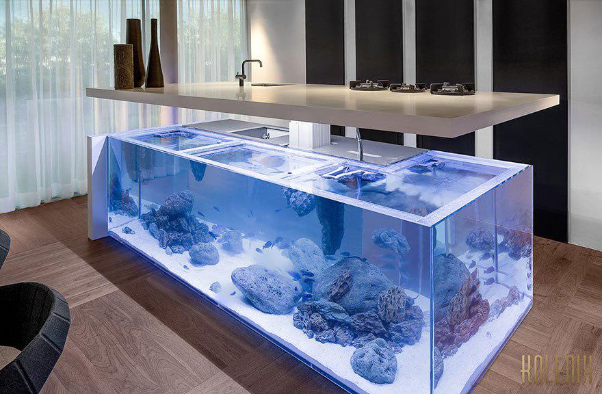 ilot_aquarium